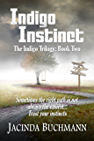 Indigo Instinct: The Indigo Trilogy:  Book Two