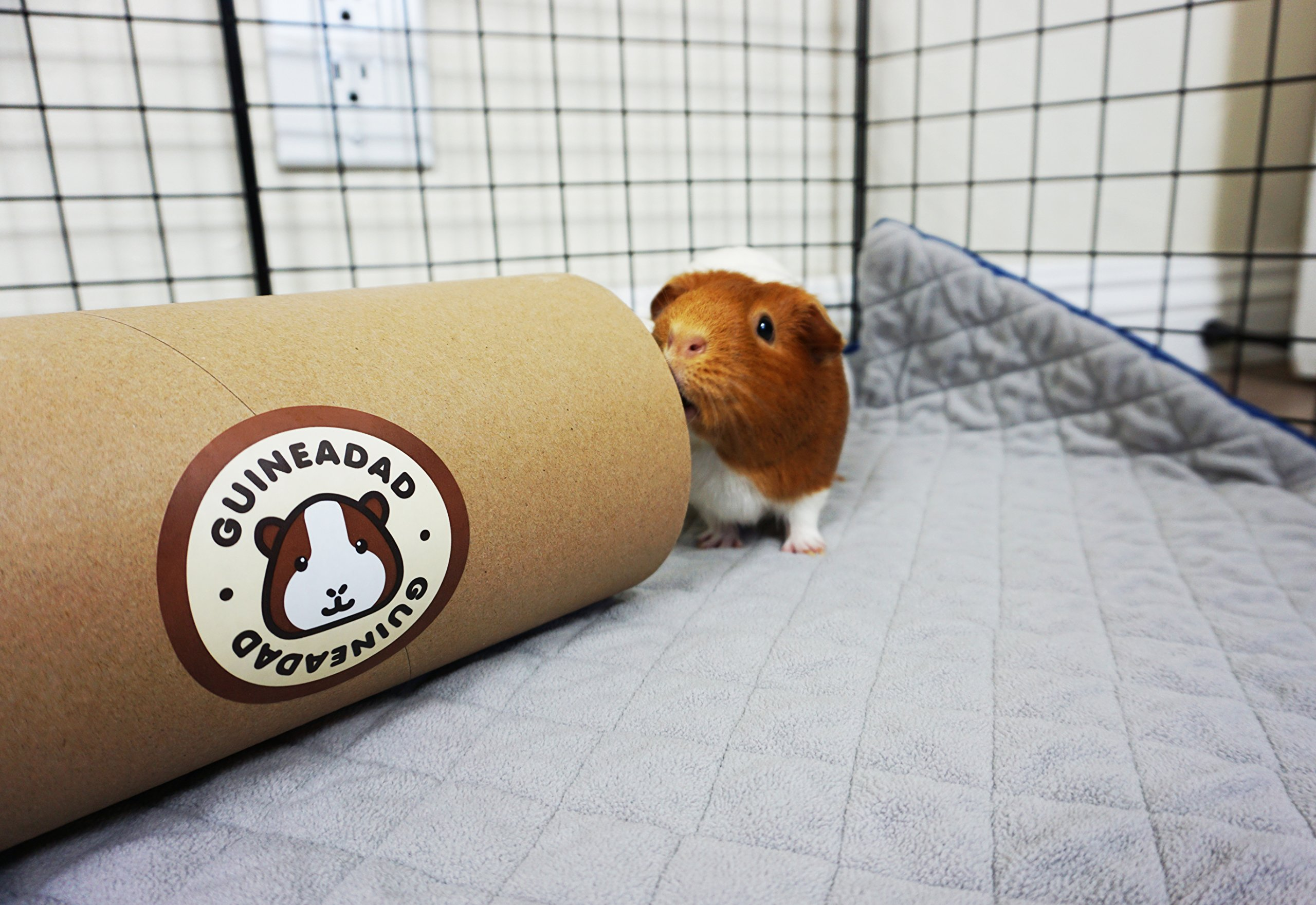 GuineaDad Fleece Liner 2.0 for | Guinea Pig Fleece Cage Liners | Guinea Pig Bedding | Extra Absorbent Antibacterial Bamboo | Waterproof | Available Various Cage Sizes by GuineaDad (Image #3)
