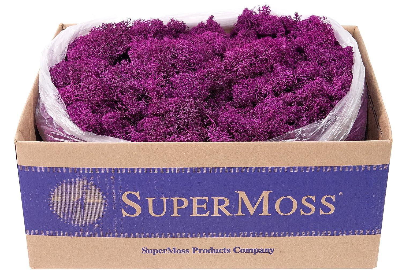 21742 Reindeer Moss Preserved Natural SuperMoss 3lbs