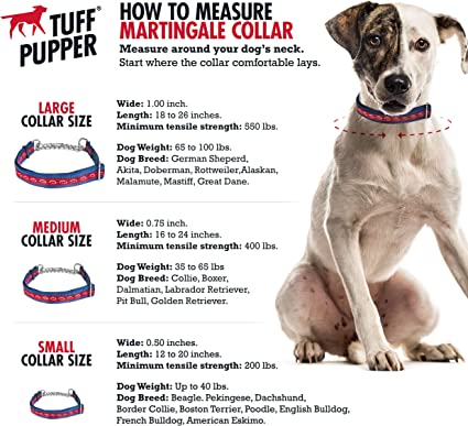 Amazon Com Tuff Pupper Martingale Collar For Dogs Is Perfect For