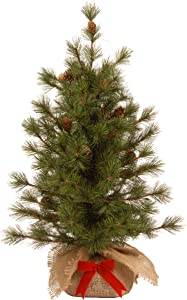National Tree 3 Foot Bristle Cone Pine Tree with 44 Cones and Red Bow in a Burlap Base (BCP3-700-30-1)