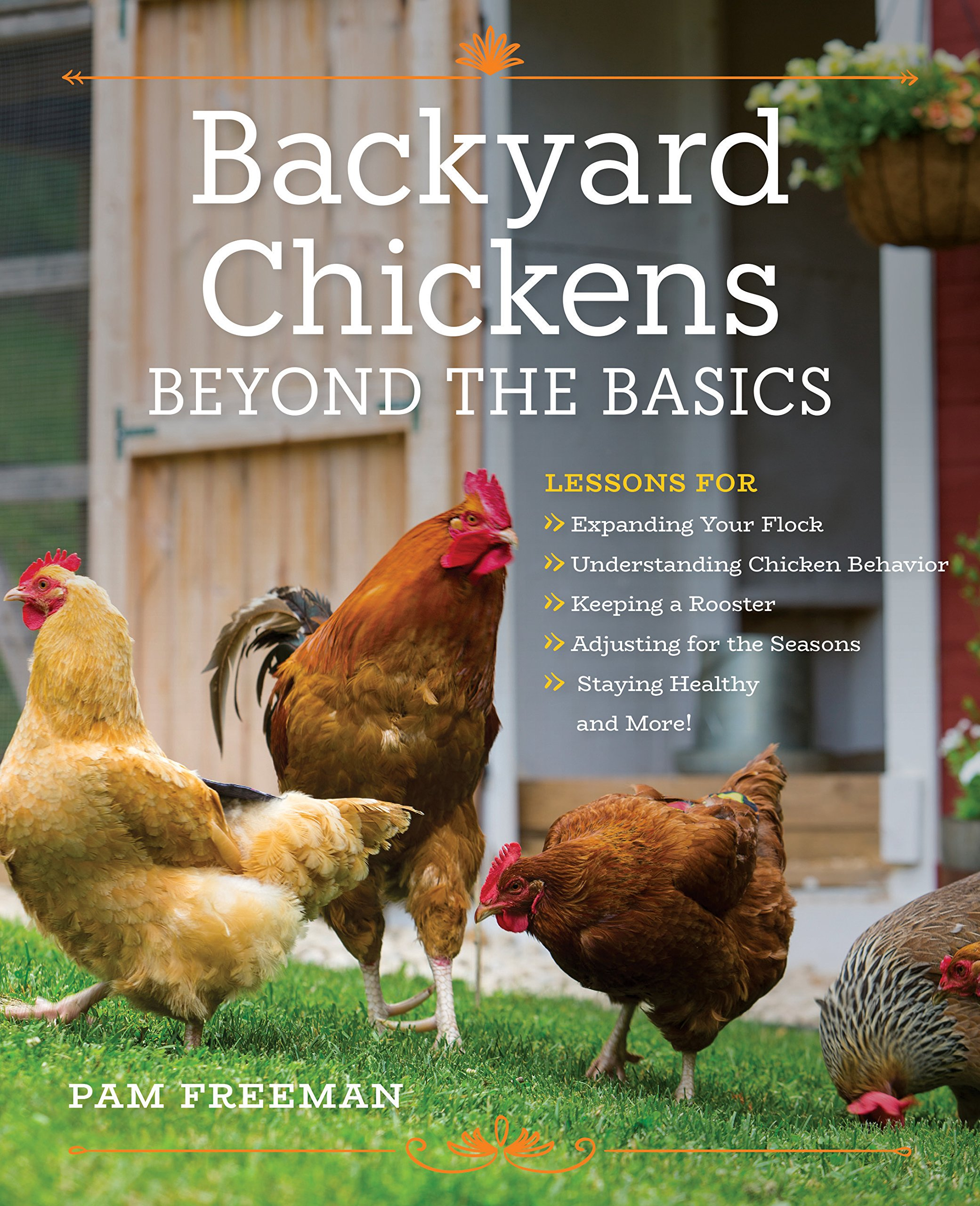 Backyard Chickens Beyond the Basics: Lessons for Expanding Your Flock,  Understanding Chicken Behavior, Keeping a Rooster, Adjusting for the  Seasons, ...