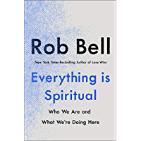 Everything is Spiritual: A Brief Guide to Who We Are and What We're Doing Here (English Edition)