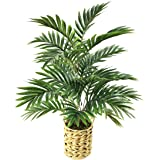 """WANGYANG Artificial Palm Tree 24"""" Faux Plants Décor Indoor Outdoor,Fake Plastic Areca Palm Plants in a Woven Pot for Home and"""