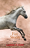 Fire Storm (One Dollar Horse 3) (German Edition)