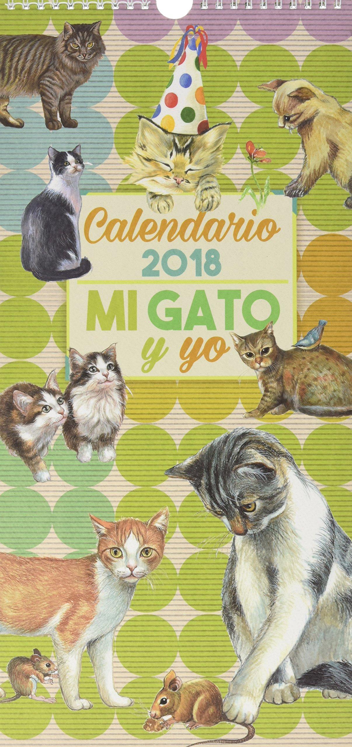 CALENDARIO MI GATO Y YO 2018 (Spanish) Paperback