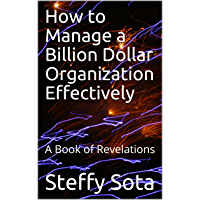 How to Manage a Billion Dollar Organization Effectively: A Book of Revelations (English Edition)
