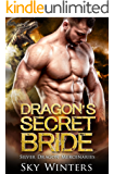 Dragon's Secret Bride (Silver Talon Mercenaries Book 3)