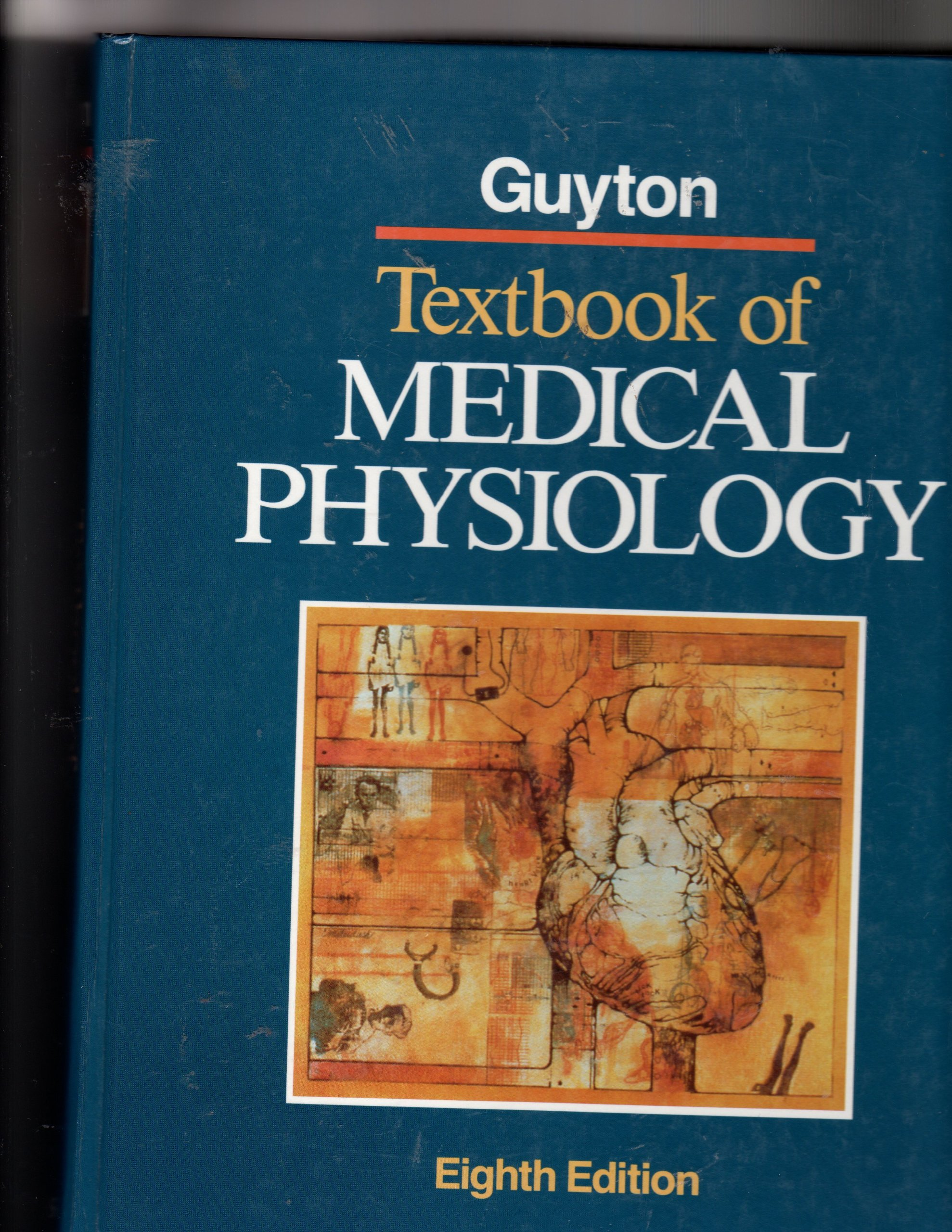 ANATOMY GUYTON PDF DOWNLOAD