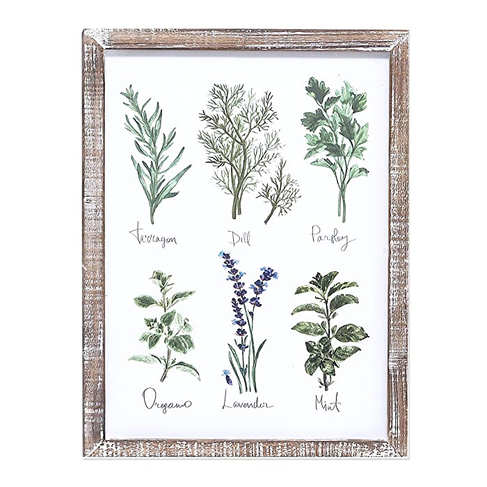 "Barnyard Designs Kitchen Herbs and Spices Wall Art Decor Botanical Print Sign Rustic Country Farmhouse Wood Plaque Framed Home Wall Decor 15.75"" x 11.75"""