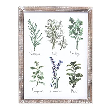 """Barnyard Designs Kitchen Herbs and Spices Wall Art Decor Botanical Print Sign Rustic Country Farmhouse Wood Plaque Framed Home Wall Decor 15.75"""" x 11.75"""""""