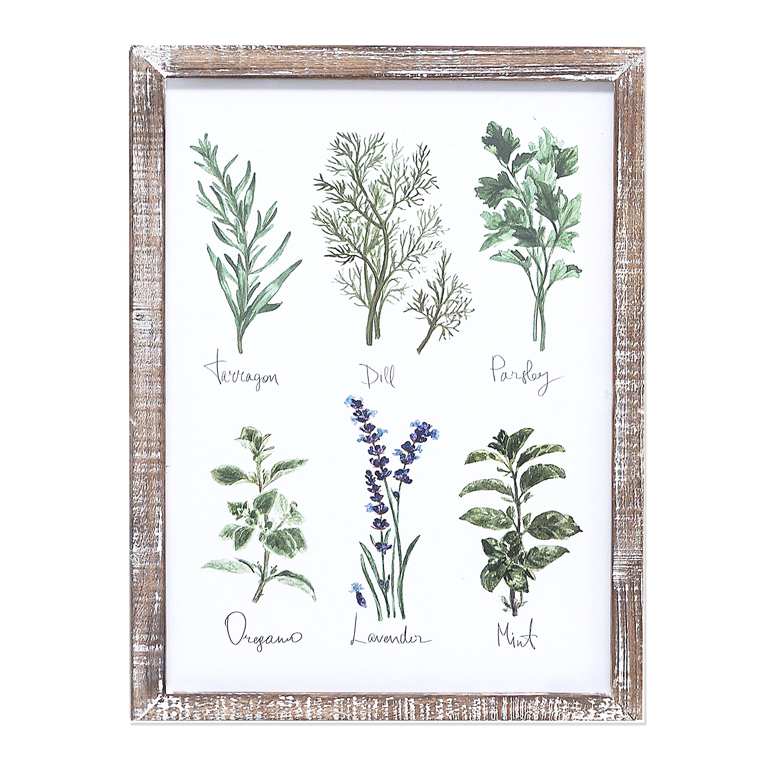Barnyard Designs Kitchen Herbs and Spices Wall Art Decor Botanical Print Sign Rustic Country Farmhouse Wood Plaque Framed Home Wall Decor 15.75'' x 11.75''