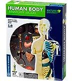 Thames & Kosmos 260830 Human Body Anatomy Model Toy, Multi