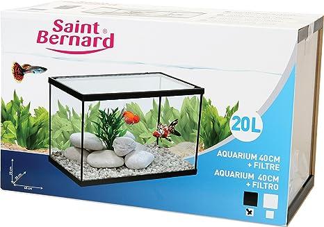 SAINT BERNARD® - Acuario con Filtro para acuarofilia - 40 cm. - 20 litros