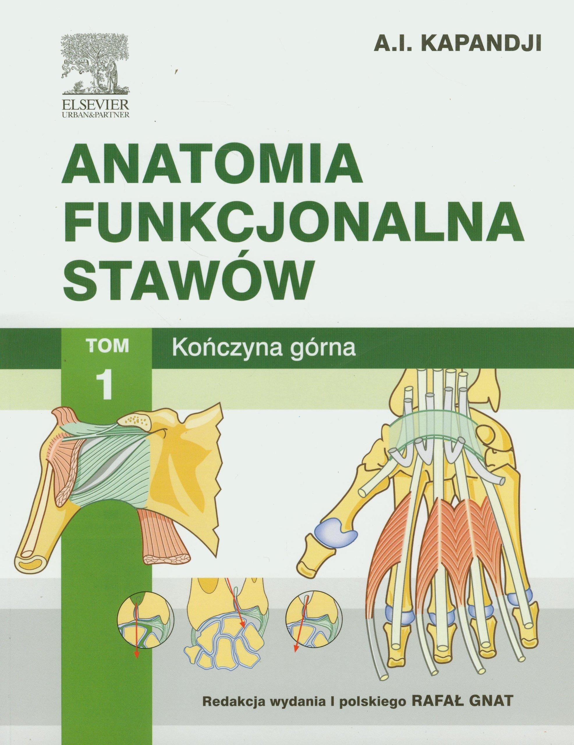 Anatomia Funkcjonalna Stawow Tom 1 Konczyna Gorna Amazon