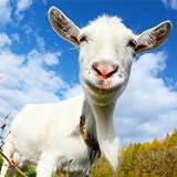 Crazy Goat