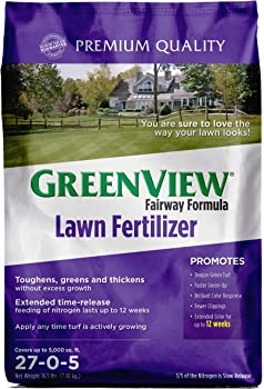 GreenView Fairway Formula Lawn Fertilizer
