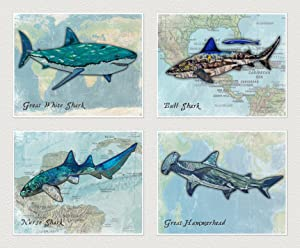 "Shark Art Prints for Kids ((B) Set of Four, 8""x10"")"