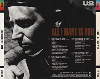 All I Want Is You CD