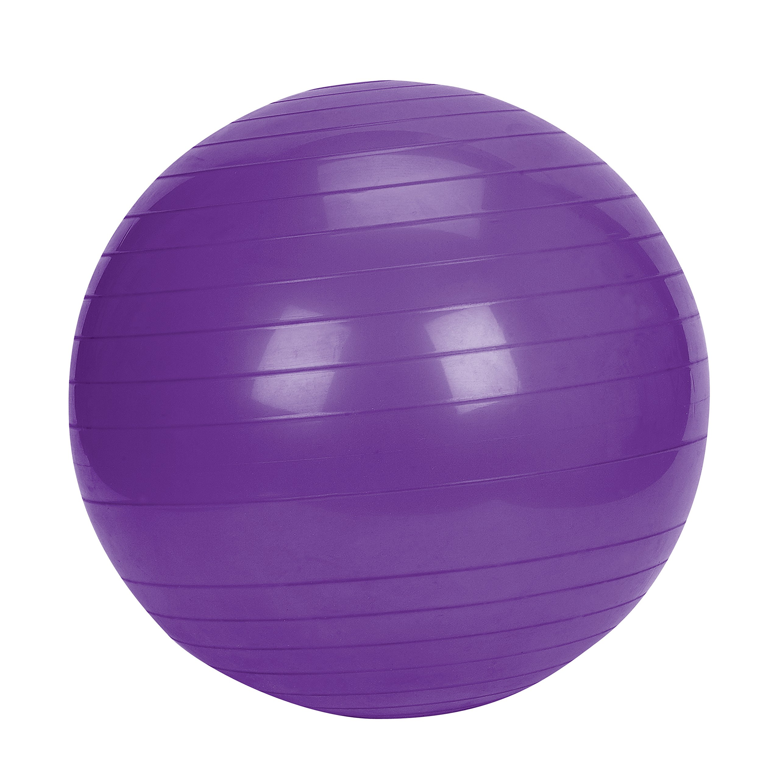 Sunny Health & Fitness Exercise Ball, 65 CM