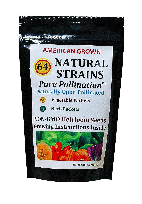 64 Strain Seed Variety Pack - 24,000+ Vegetable/Herb Seeds