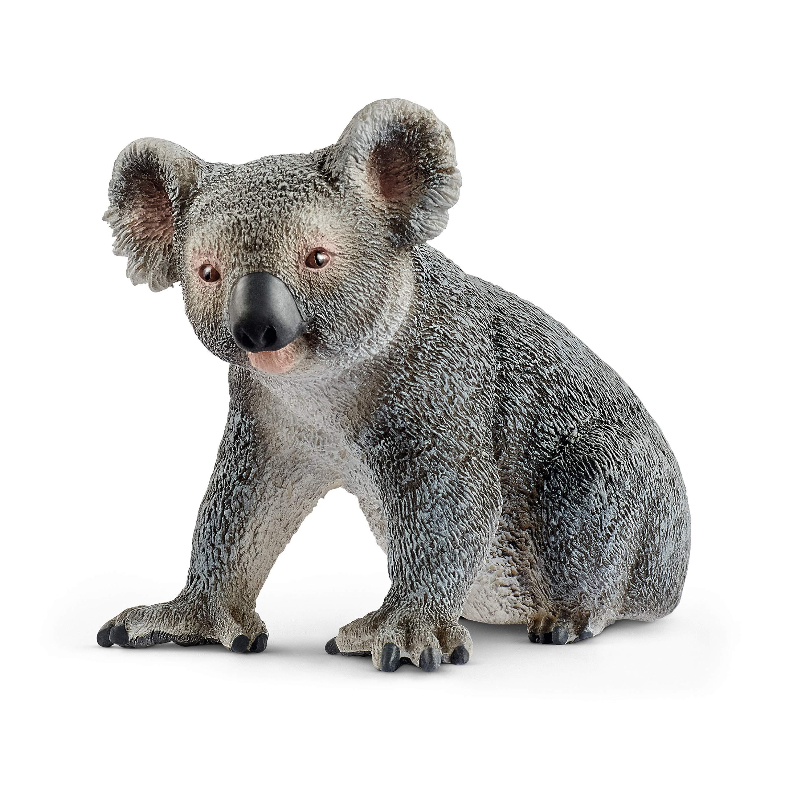 Schleich Wild Life, Animal Figurine, Animal Toys for Boys and Girls 3-8 Years Old, Koala Bear