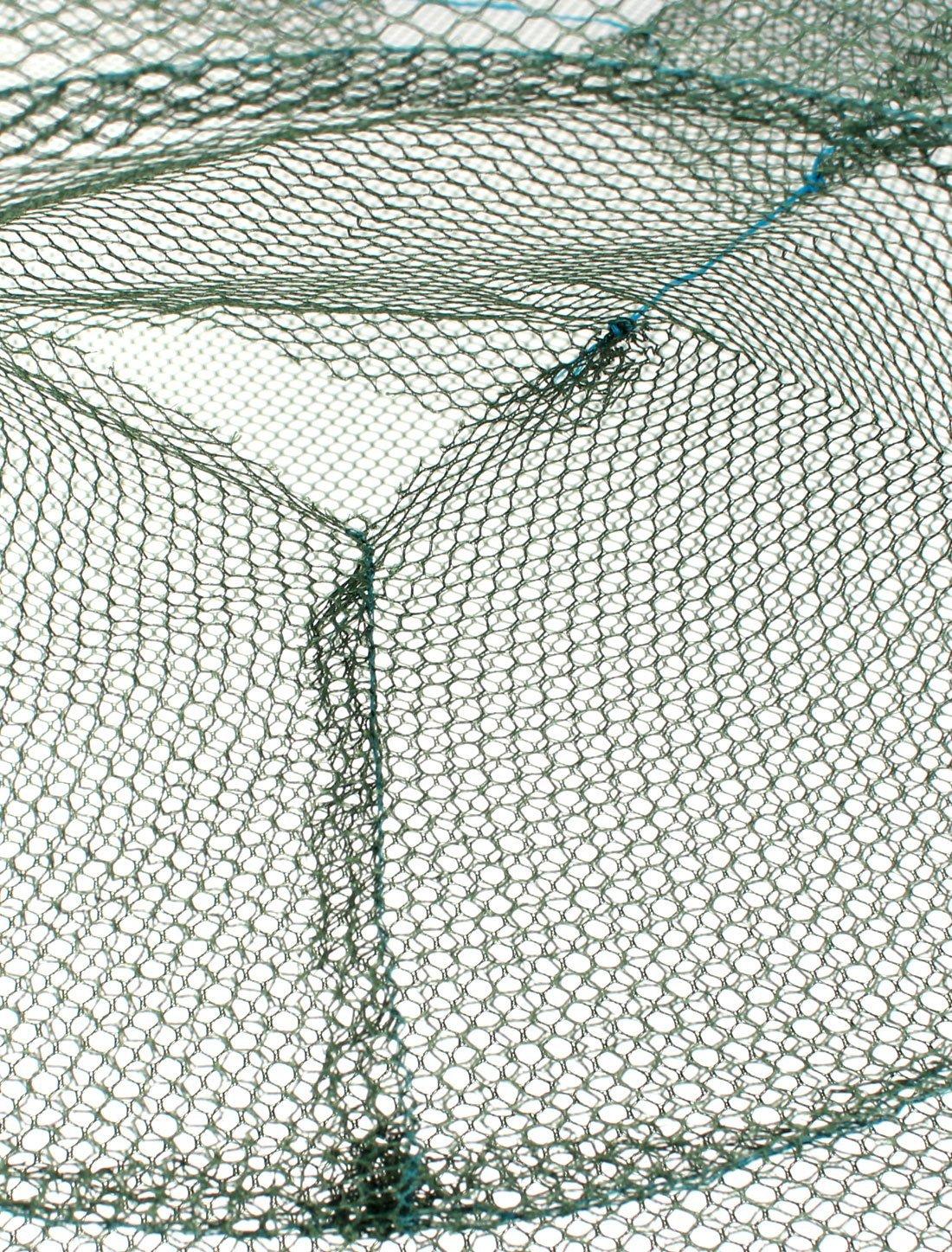 Amazon.com : eDealMax Paraguas de Nylon en Forma de Pesca del cangrejo Salabardo 60cm x 60cm Verde : Sports & Outdoors