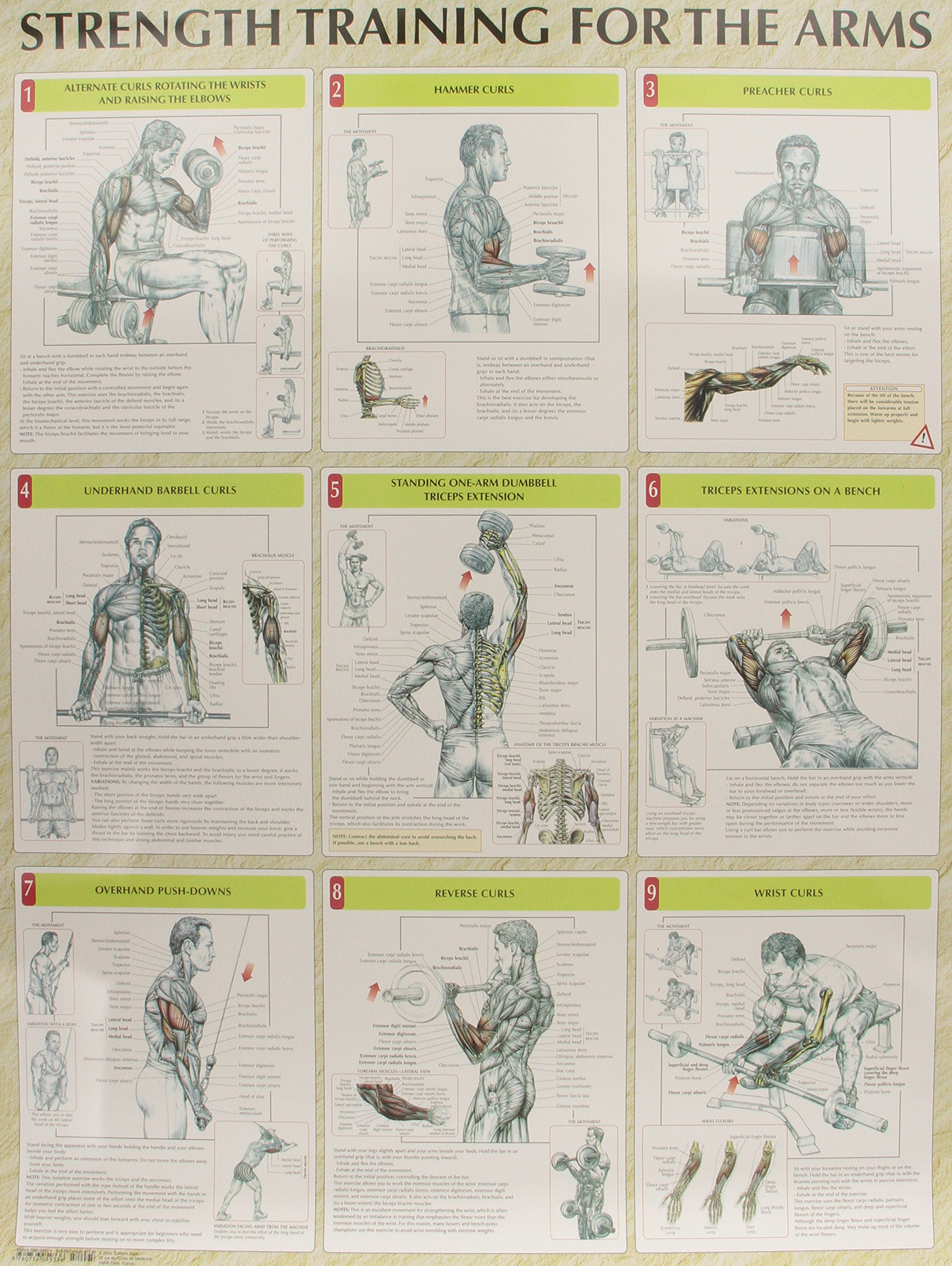 Strength Training Anatomy Poster Series: Frederic Delavier ...