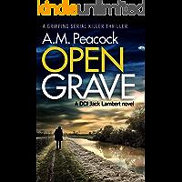 Open Grave: a gripping serial killer thriller