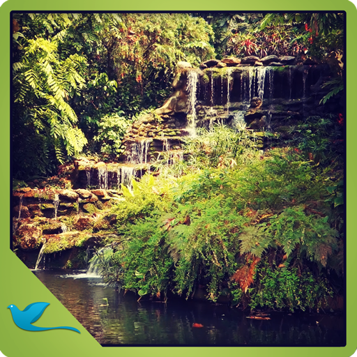 - Green Garden Waterfall - Meditate in the Peaceful garden