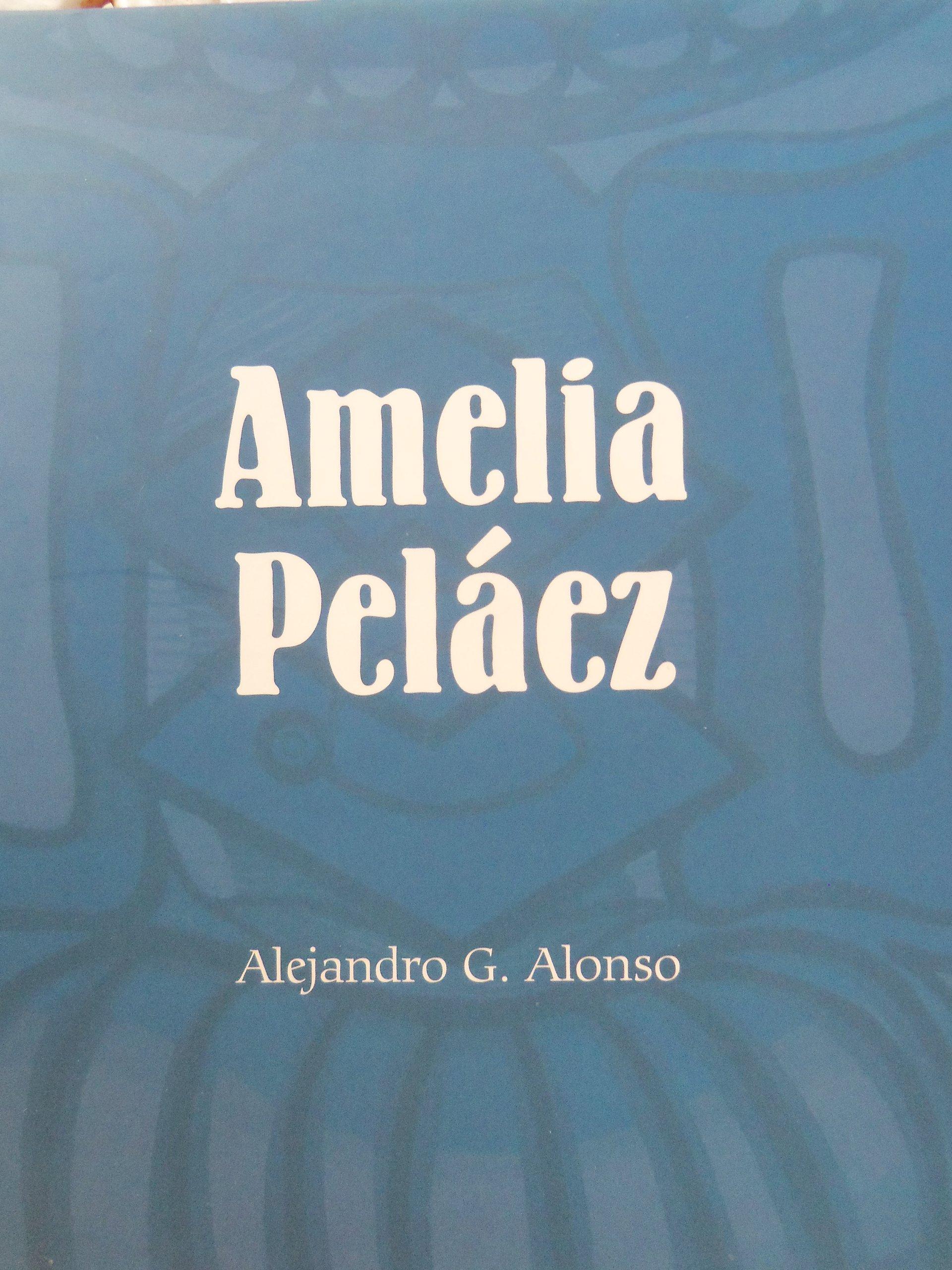 Download Amelia Pelaez.catalogo.de Arte Cubano.segunda Edicion Corregida Y Ampliada. ebook