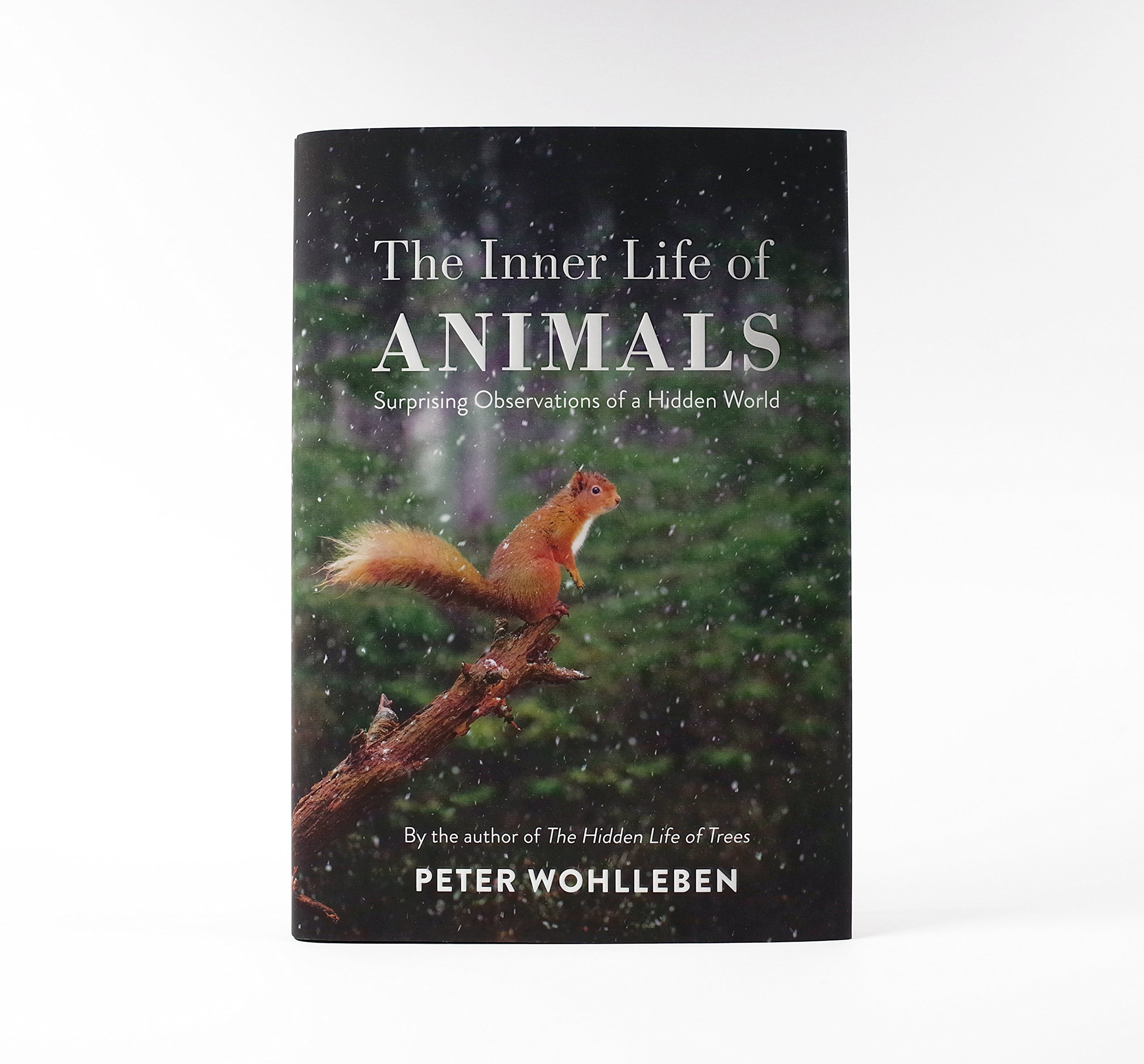 The Inner Life Of Animals: Surprising Observations Of A Hidden World:  Amazon.co.uk: Peter Wohlleben: 9781847924544: Books