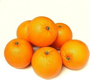 ALEKO 6AFORG Decorative Lifelike Realistic Artificial Fake Fruit Decor Oranges Lot of 6