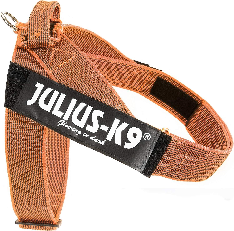 Julius-K9 Color & Gray Arnés de Correa de IDC, Tamaño: 2, Naranja-Gris