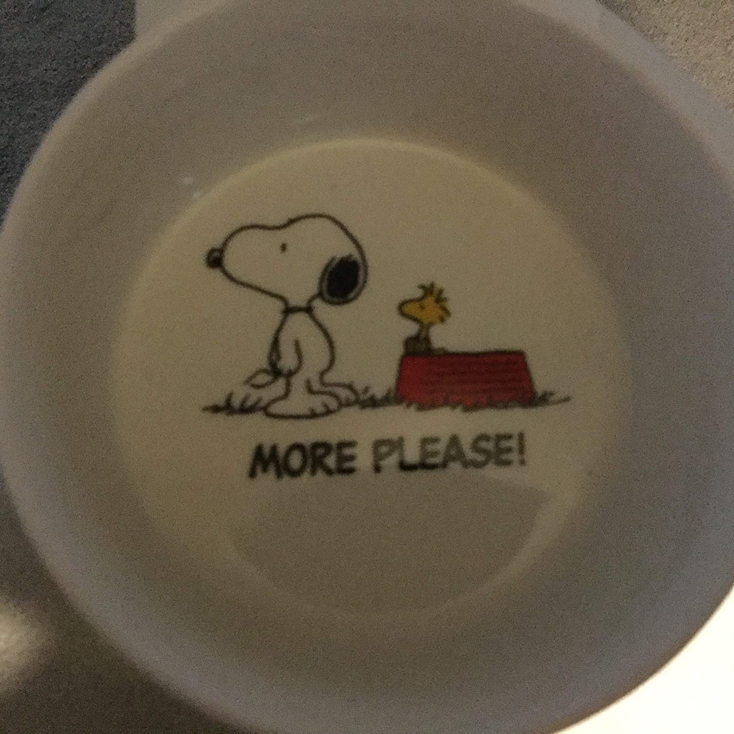 More Please, Now What? Food/Water Bowl, Dog Bowl, Snoopy Bowl