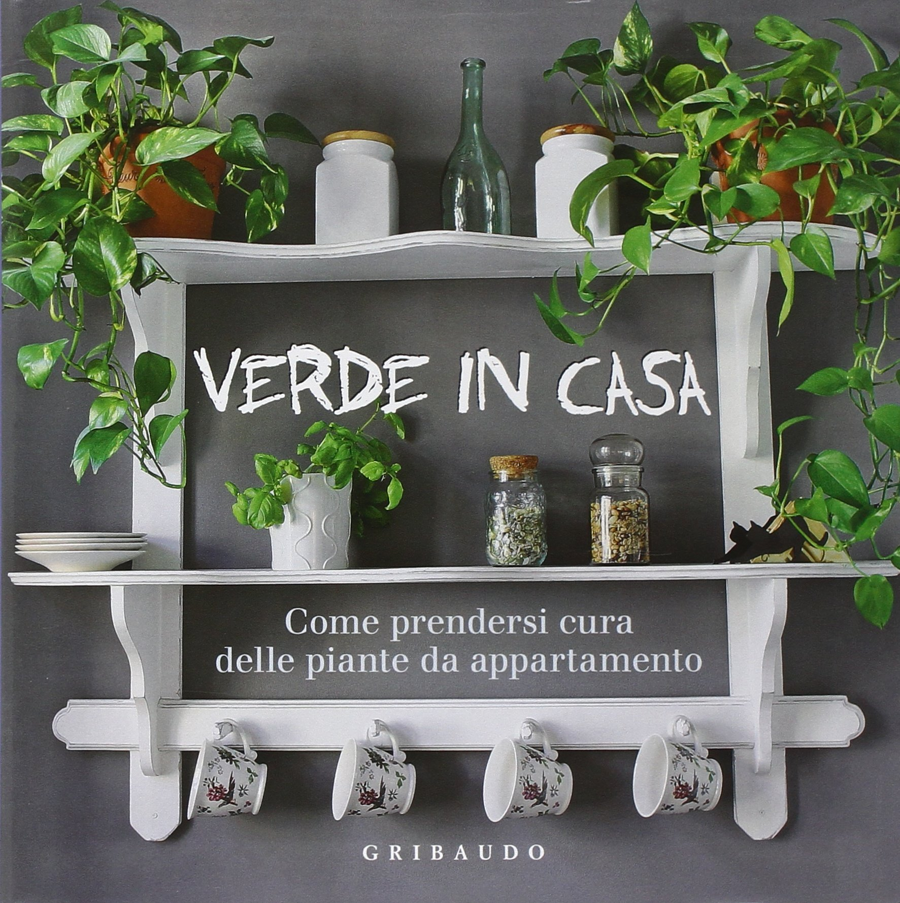 Piante Da Appartamento Amazon.Verde In Casa Come Prendersi Cura Delle Piante Da Appartamento