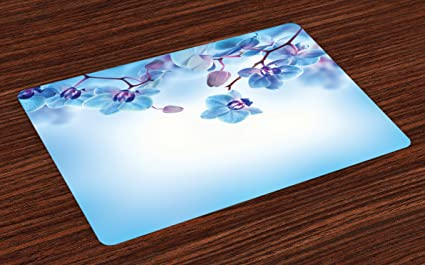Incredible Amazon Com Ambesonne Flower Place Mats Set Of 4 Orchids Home Remodeling Inspirations Genioncuboardxyz