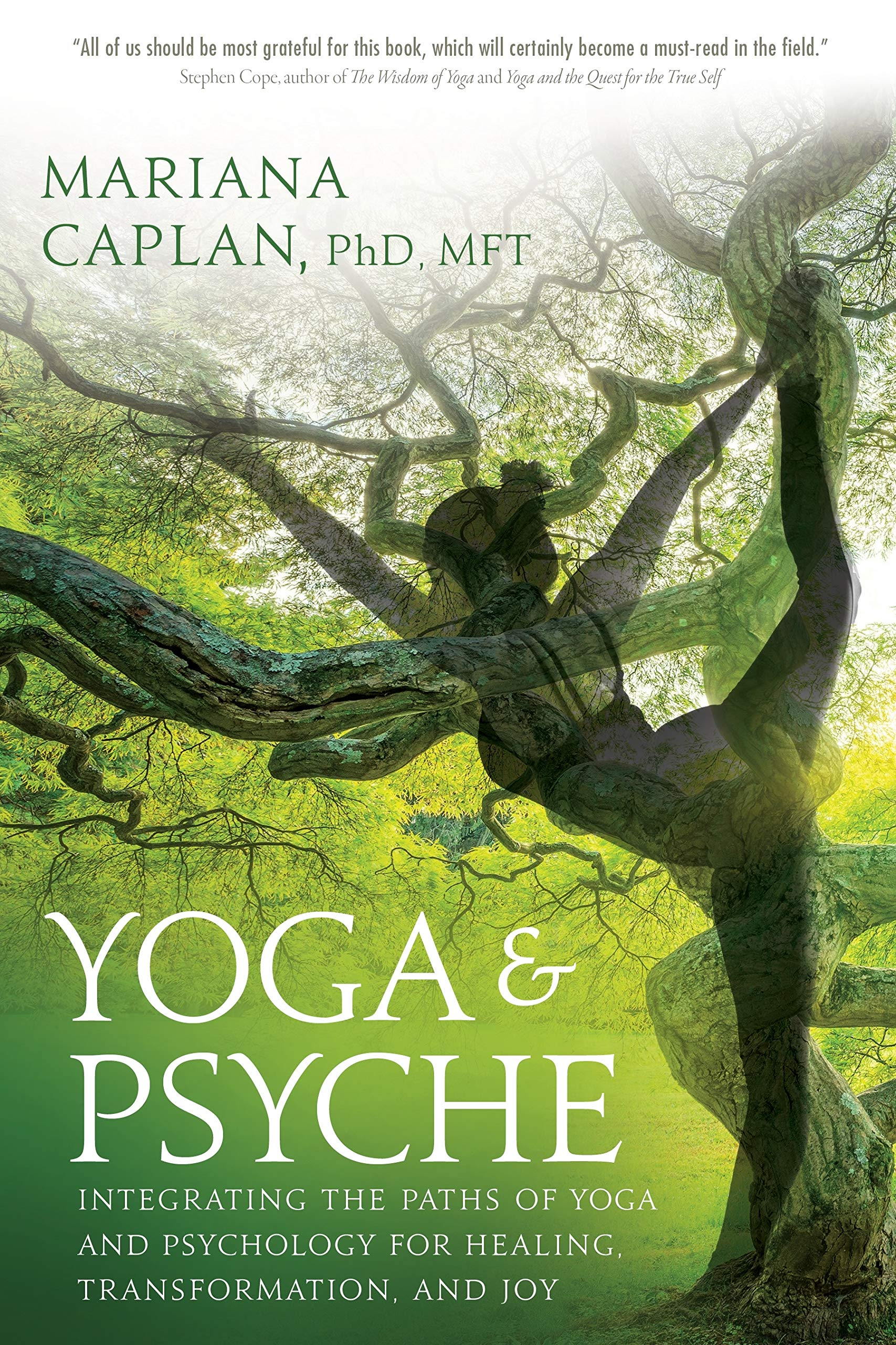 Amazon.com: Yoga & Psyche: Integrating the Paths of Yoga and ...