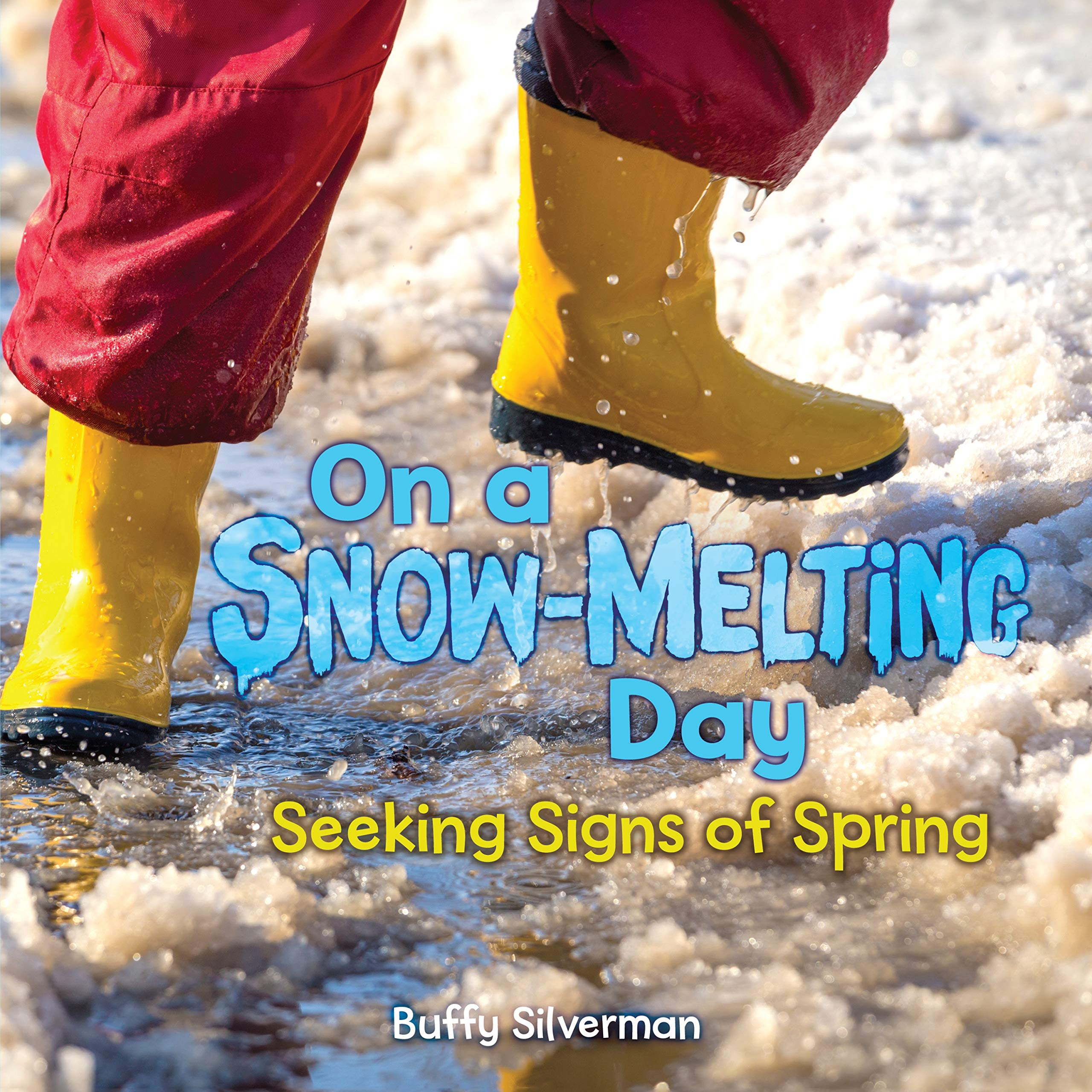 Image result for on a snow melting day amazon