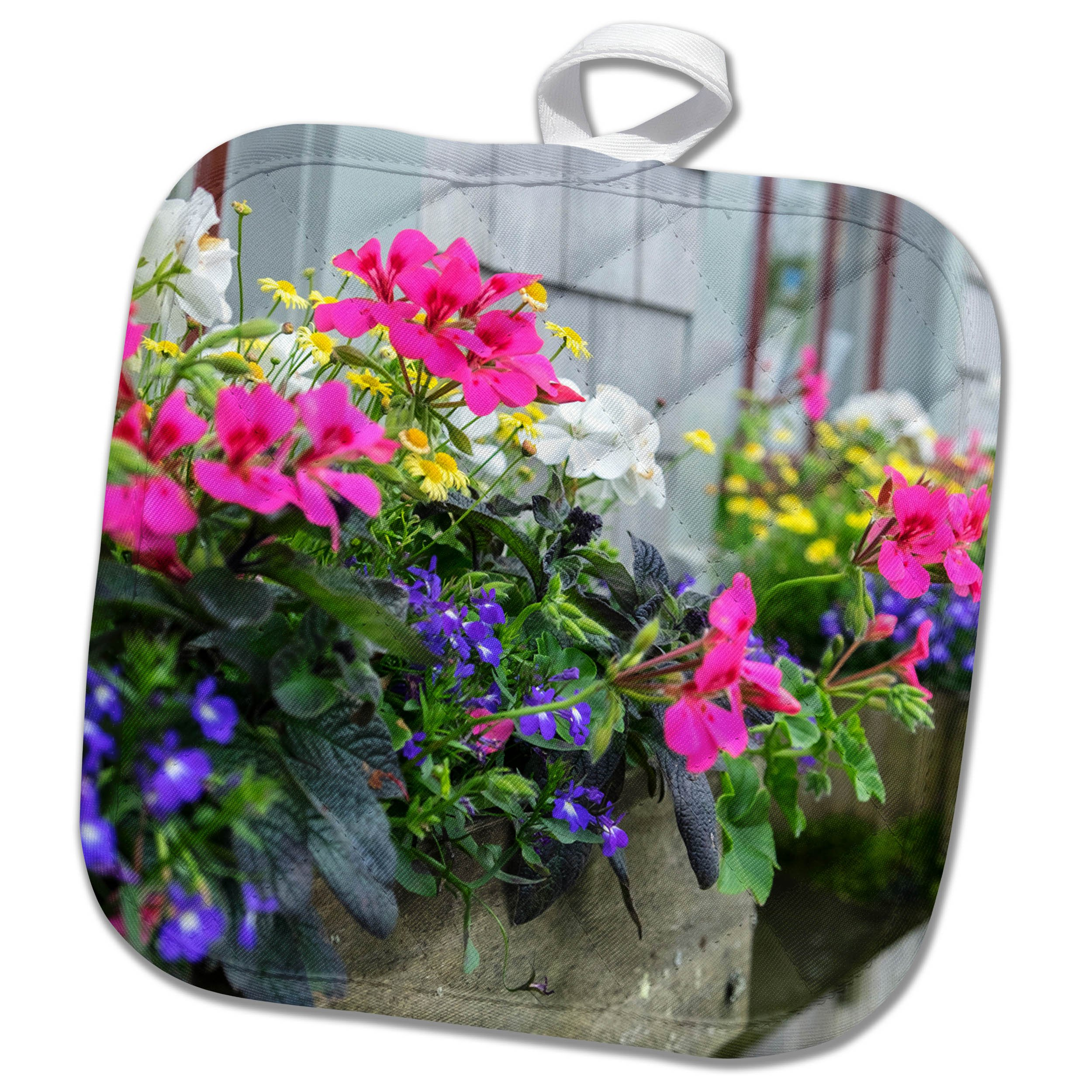 3dRose Danita Delimont - Flowers - Flowers in window boxes, Nantucket, Massachusetts, USA - 8x8 Potholder (phl_279042_1)