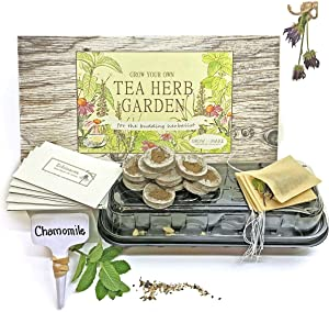 Grow and Make DIY Tea Herb Garden Kit - Learn The Basics of Herbalism with Five Seed Varieties to Grow at Home