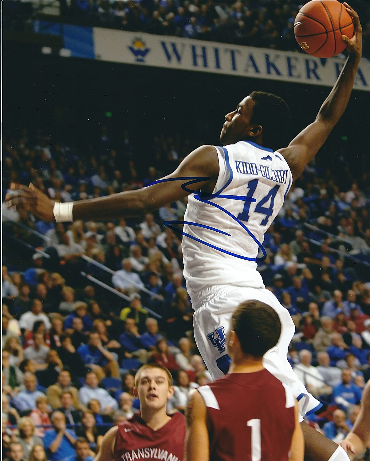 15785f55e57 Autographed Michael Kidd-Gilchrist University of Kentucky Wildcats 8x10  photo w COA at Amazon s Sports Collectibles Store