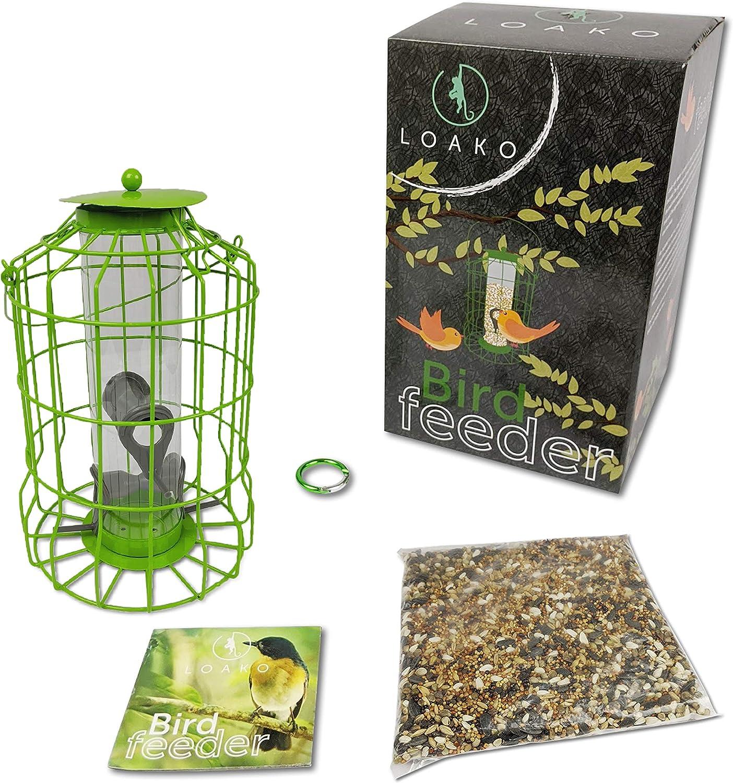 Bird Feeder | Caged Tube Bird Feeder | Squirrels and Large Birds Deterrent | Premium Materials | Weatherproof and Water Resistant | Great for Outdoors | Bonus: Includes Bird Food Mix