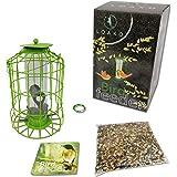 Bird Feeder | Caged Tube Bird Feeder | Squirrels and Large Birds Deterrent | Premium Materials | Weatherproof and Water…