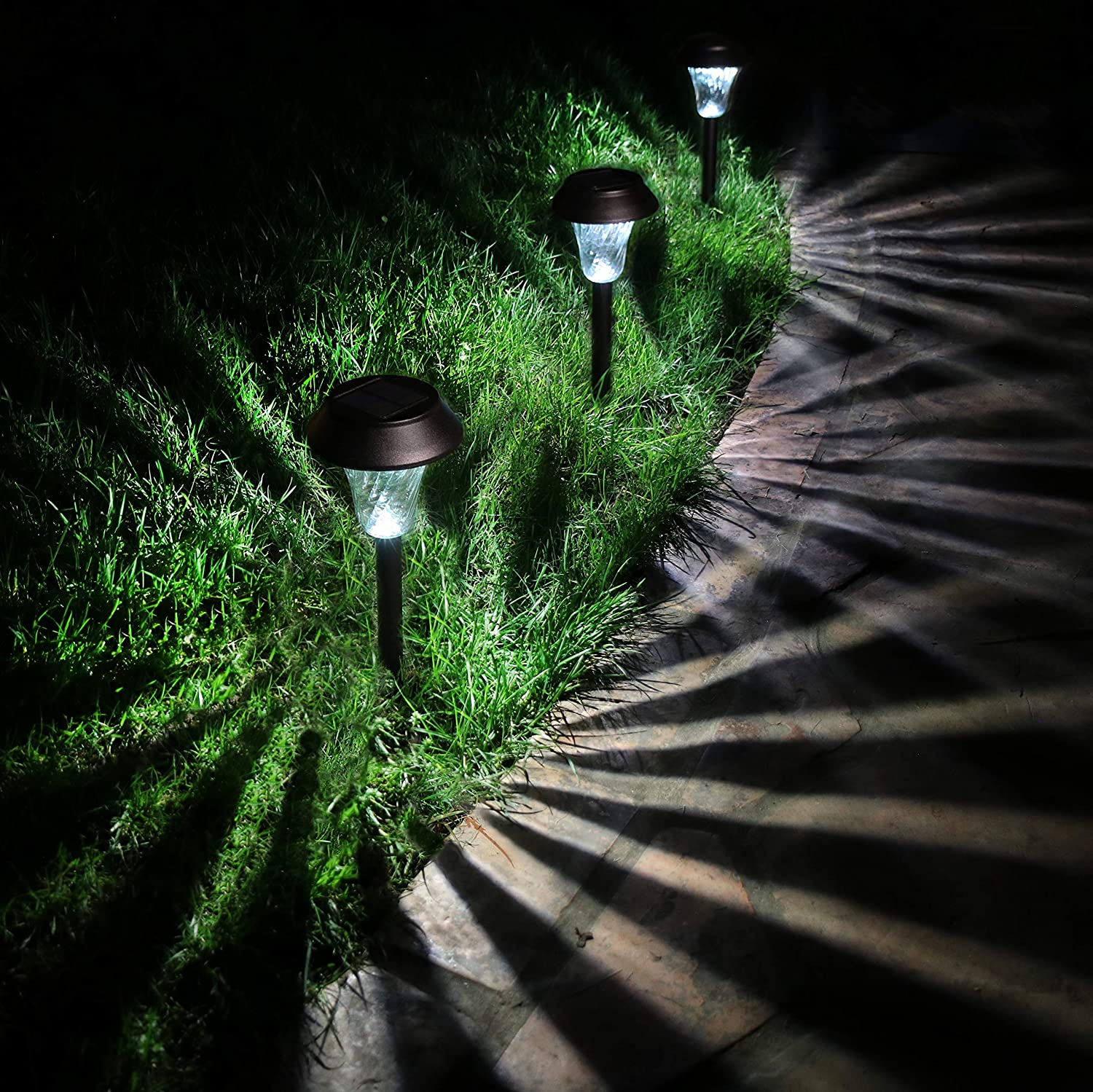 Enchanted Spaces Solar Path Light