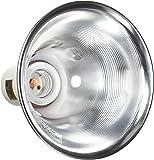 Amazon Com Exo Terra Sun Glo Neodymium A19 Lamp 60 Watt Pet Habitat Lights Pet Supplies