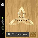What Is the Trinity?: Crucial Questions Series, Book 10
