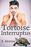 Tortoise Interruptus