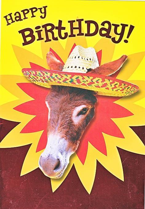 Happy Birthday Donkey Wearing A Hat Humorous Birthday Card Amazon