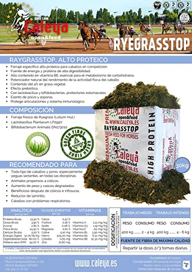 Open&Feed Raygrass Top 30 Kg + Viruta Extra (Palet 12 + 6 Unidades ...